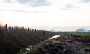 Ganzenontheffing in Gelderland is uitgebreid met schemerperiode