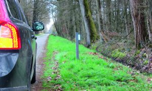 Wildspiegels verwijderd, meer dode reeën tussen Markelo en Rijssen – Tubantia