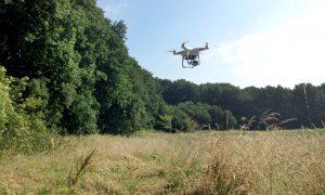 Jagers speuren met drone's naar reekalfjes – De Stentor