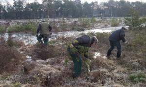 € 75.000 beschikbaar voor natuur- en landschapsprojecten