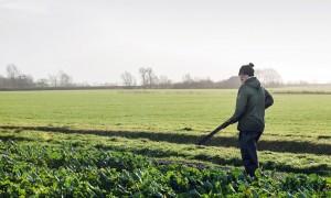 VVD-Kamerlid Rudmer Heerema over de wet Natuurbescherming