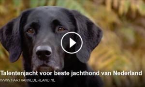 Nimrod 2015 op Hart van Nederland – SBS 6