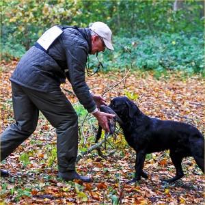 Dit jaar werd de Nimrod gewonnen door Robert Bolsenbroek met zijn Labrador Retriever Moon.