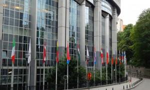 Jagersvereniging steunt strijd tegen illegale wapenhandel