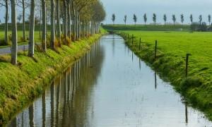 Jagers betrappen Engelse stropers op heterdaad in Zeeland – Provinciale Zeeuwse Courant