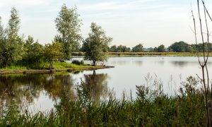 Update belangenbehartiging Jagersvereniging 3e kwartaal 2016