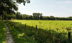 Provincie-overleg – Schoonloo