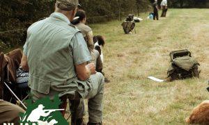 Privé: NL Jaagt- Jachthondenkwalificaties voor de Nimrod