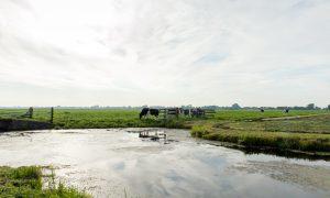 Jachtopleiding steeds populairder – RTV Utrecht