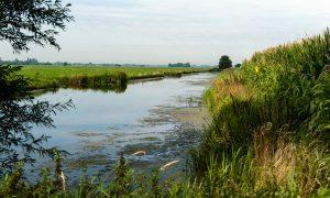 Landschapspijn – column van Oswin Schneeweisz in De Jager #14