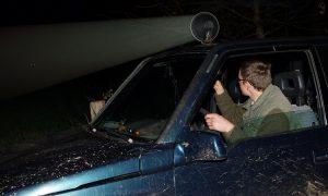 Jacht op vos mag in weidevogelgebieden –Leeuwarder Courant