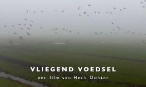 Persbericht – Documentaire Vliegend Voedsel belicht Nederlandse wilde gans CDA-Kamerlid Jaco Geurts opent première
