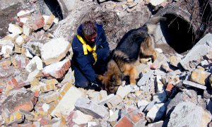 Wat kunnen voorjagers leren van: Simon Prins, brigadier en hondentrainer bij de politie