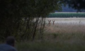 Door de ogen van de jager – juli 2017