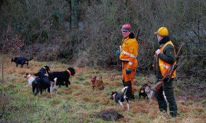 Update checklist jagen in Duitsland & corona: quarantainemaatregelen