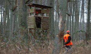 Kamervragen PvdD over bewegingsjacht in Noord-Brabant beantwoord
