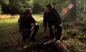 Lex Uiting op wildjacht – RTL Late Night