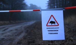 Beperkte bewegingsjacht in Brabantse Kempen – De Jager