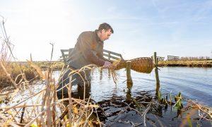Jagers plaatsen eendenkorven in de Krimpenerwaard – Het Kontakt