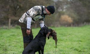 Persbericht – Nimrod 2019: Labrador Retriever Bing is de beste jachthond van Nederland