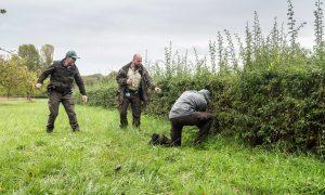 Kamervragen D66 over bewapening van BOA's