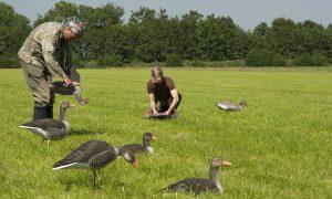 Jagersvereniging maakt zich sterk voor eenduidigheid verlengingsbesluiten