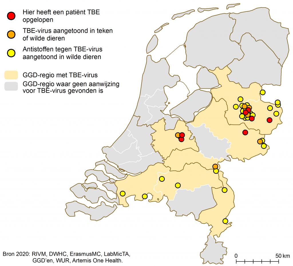 Verspreiding teken-encefalitusvirus juni 2020