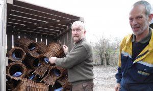 Eerste eendenbroedkorven-drive through in Lochem